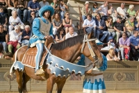 Behind the Palio: a tale of people and horses